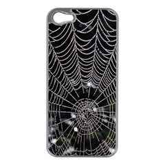 Spider Web Wallpaper 14 Apple Iphone 5 Case (silver)