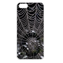 Spider Web Wallpaper 14 Apple iPhone 5 Seamless Case (White)