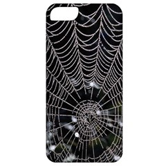 Spider Web Wallpaper 14 Apple iPhone 5 Classic Hardshell Case