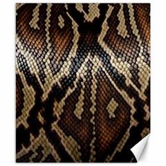 Snake Skin O Lay Canvas 8  X 10