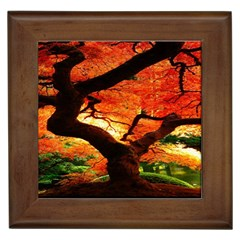 Maple Tree Nice Framed Tiles