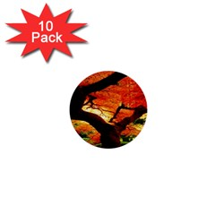 Maple Tree Nice 1  Mini Buttons (10 pack)