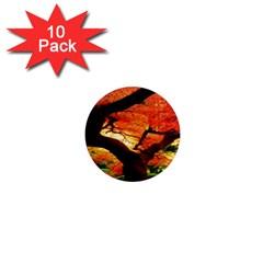 Maple Tree Nice 1  Mini Magnet (10 Pack)
