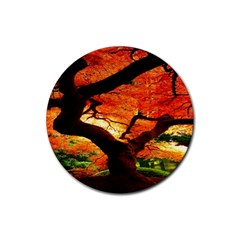 Maple Tree Nice Rubber Coaster (round)