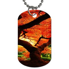 Maple Tree Nice Dog Tag (two Sides)