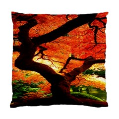 Maple Tree Nice Standard Cushion Case (two Sides)