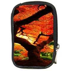 Maple Tree Nice Compact Camera Cases