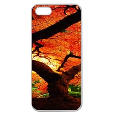 Maple Tree Nice Apple Seamless iPhone 5 Case (Clear)