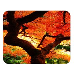 Maple Tree Nice Double Sided Flano Blanket (Large)