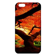 Maple Tree Nice Iphone 6 Plus/6s Plus Tpu Case