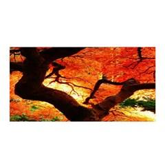 Maple Tree Nice Satin Wrap