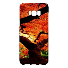 Maple Tree Nice Samsung Galaxy S8 Plus Hardshell Case