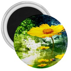 Yellow Flowers 3  Magnets