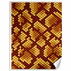 Snake Skin Pattern Vector Canvas 36  x 48