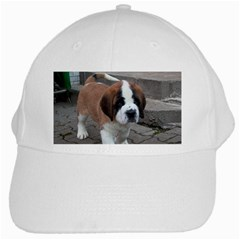 St Bernard Pup White Cap