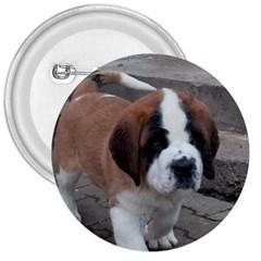 St Bernard Pup 3  Buttons