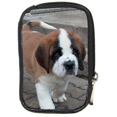 St Bernard Pup Compact Camera Cases