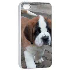 St Bernard Pup Apple iPhone 4/4s Seamless Case (White)