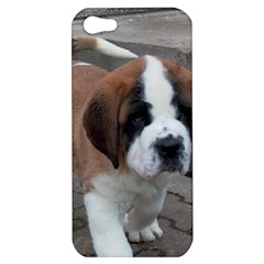St Bernard Pup Apple iPhone 5 Hardshell Case