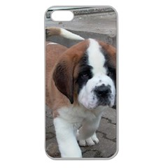 St Bernard Pup Apple Seamless iPhone 5 Case (Clear)