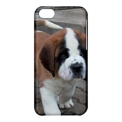 St Bernard Pup Apple iPhone 5C Hardshell Case
