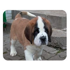 St Bernard Pup Double Sided Flano Blanket (Large)