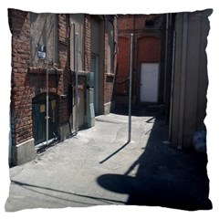 Alley Large Flano Cushion Case (Two Sides)