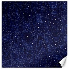 Awesome Allover Stars 01b Canvas 20  x 20