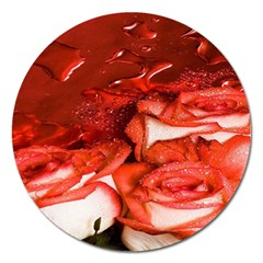 Nice Rose With Water Magnet 5  (round)