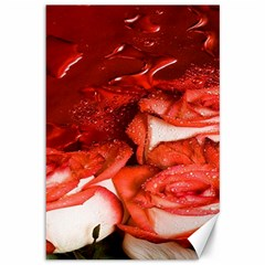 Nice Rose With Water Canvas 12  x 18