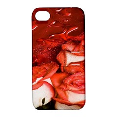 Nice Rose With Water Apple iPhone 4/4S Hardshell Case with Stand