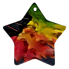 Green Yellow Red Maple Leaf Ornament (Star)