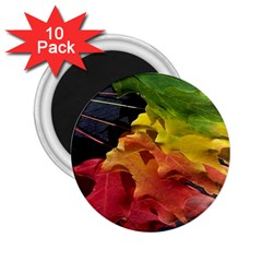 Green Yellow Red Maple Leaf 2.25  Magnets (10 pack)