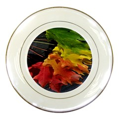 Green Yellow Red Maple Leaf Porcelain Plates
