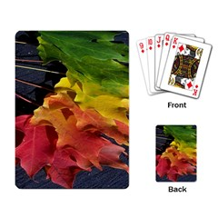 Green Yellow Red Maple Leaf Playing Card