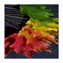 Green Yellow Red Maple Leaf Medium Glasses Cloth