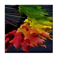 Green Yellow Red Maple Leaf Face Towel