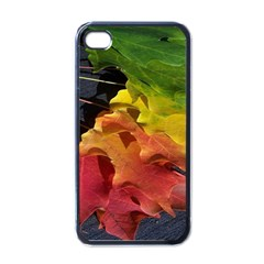 Green Yellow Red Maple Leaf Apple iPhone 4 Case (Black)
