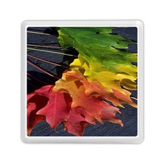Green Yellow Red Maple Leaf Memory Card Reader (square)