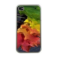 Green Yellow Red Maple Leaf Apple Iphone 4 Case (clear)