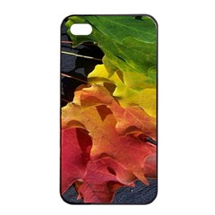 Green Yellow Red Maple Leaf Apple Iphone 4/4s Seamless Case (black)