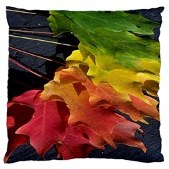 Green Yellow Red Maple Leaf Large Cushion Case (two Sides)