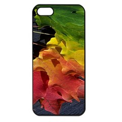 Green Yellow Red Maple Leaf Apple iPhone 5 Seamless Case (Black)