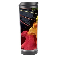 Green Yellow Red Maple Leaf Travel Tumbler