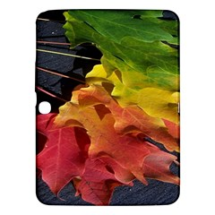 Green Yellow Red Maple Leaf Samsung Galaxy Tab 3 (10.1 ) P5200 Hardshell Case