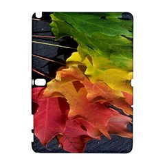 Green Yellow Red Maple Leaf Galaxy Note 1