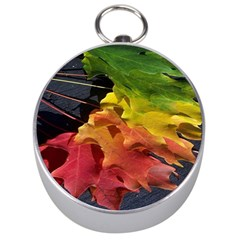 Green Yellow Red Maple Leaf Silver Compasses