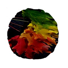 Green Yellow Red Maple Leaf Standard 15  Premium Flano Round Cushions