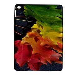 Green Yellow Red Maple Leaf iPad Air 2 Hardshell Cases