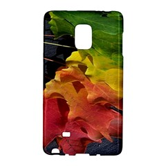 Green Yellow Red Maple Leaf Galaxy Note Edge